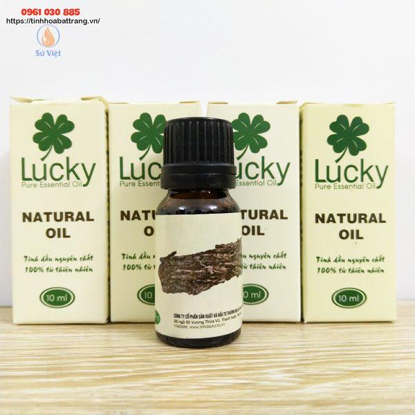Tinh dầu Pơ Mu mang hương thơm rừng núi
